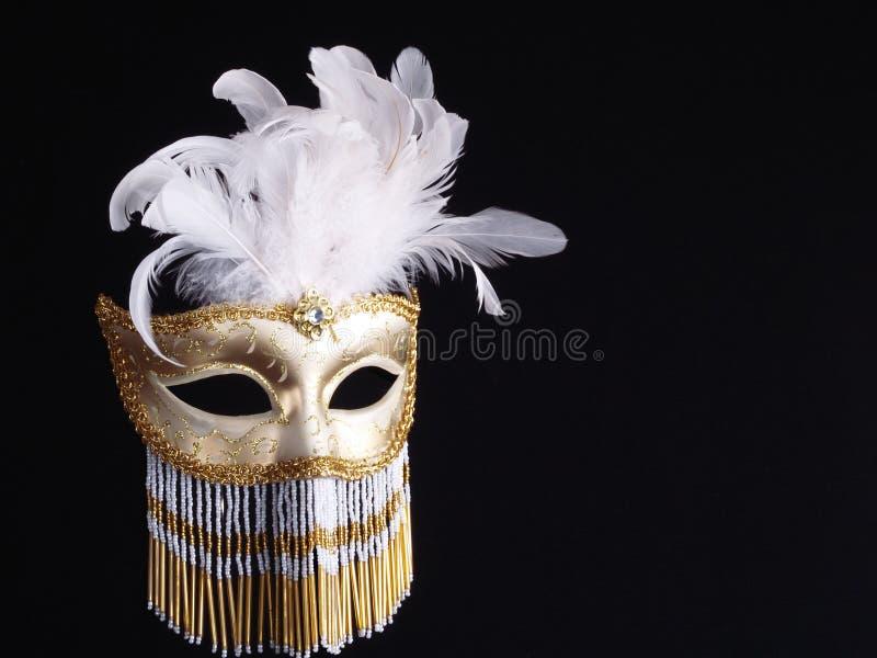 Download Traditional Venetian Carnival Mask. Stock Image - Image: 25731517