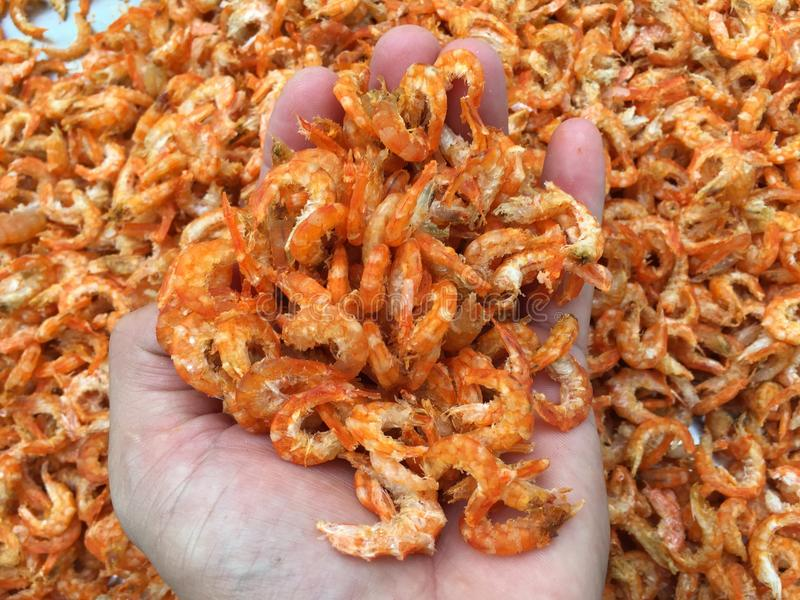 Traditional Vietnamese cuisine: dried shrimp stock image