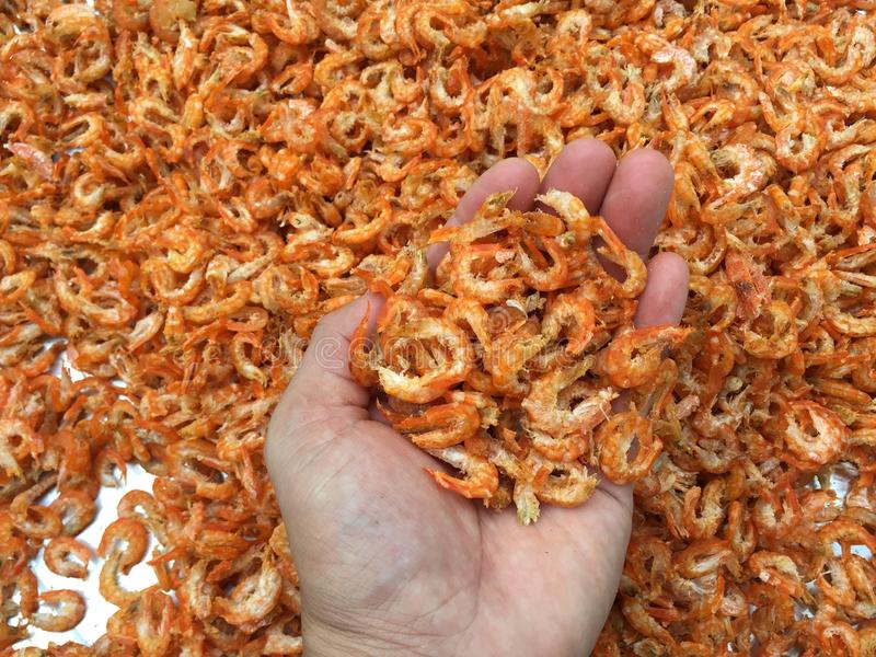 Traditional Vietnamese cuisine: dried shrimp stock photography