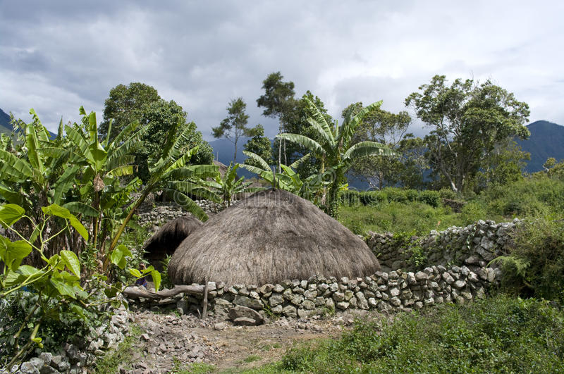 Traditional village in Papua royalty free stock images