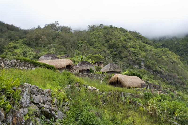 A traditional village in Papua royalty free stock photo