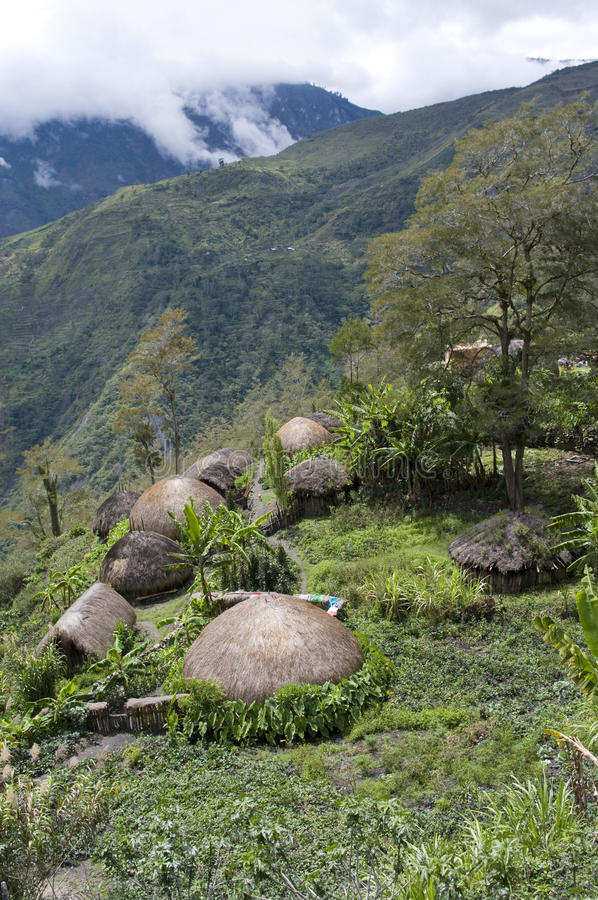 A traditional village in Papua stock images