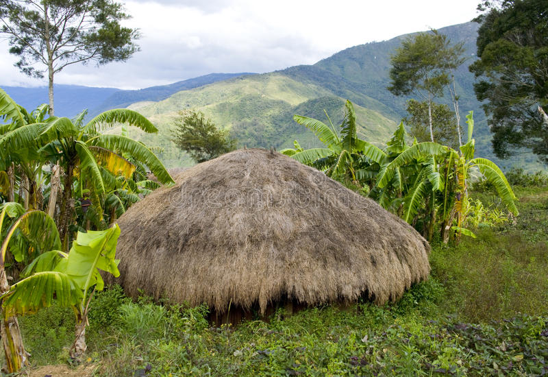 Traditional village in Papua, Indonesia. stock photography