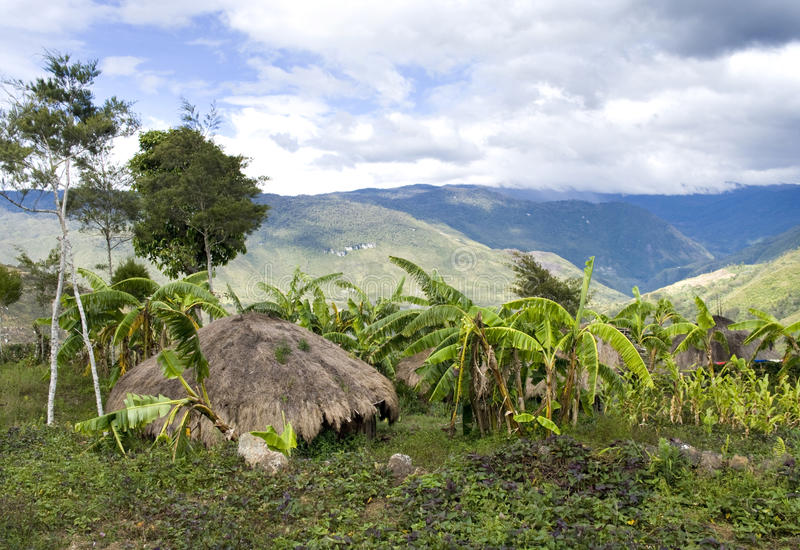 Traditional village in Papua, Indonesia. stock image