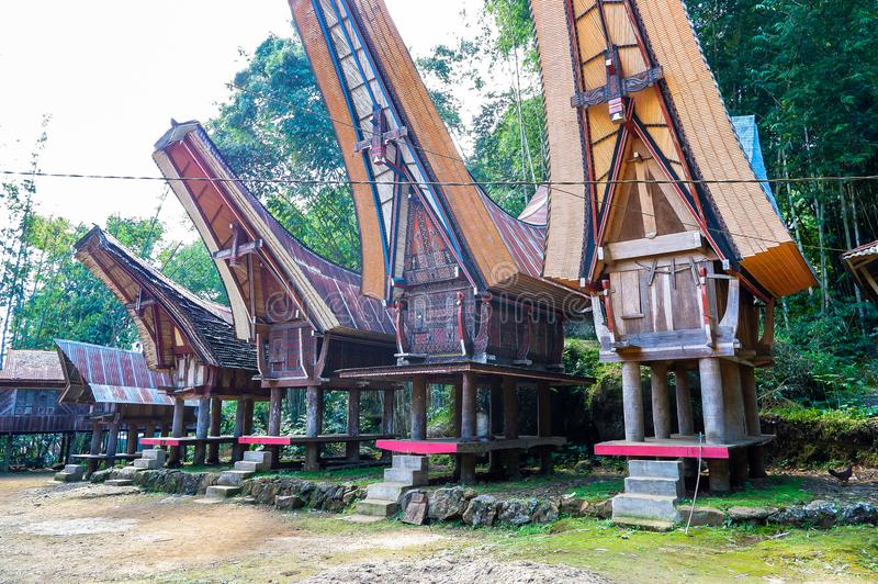 The traditional villages at Tana Toraja, Sulawesi. This photo was taken in Tana Toraja, Sulawesi, Indonesia. Tana Toraja is located in the norhtern highlands of royalty free stock photos