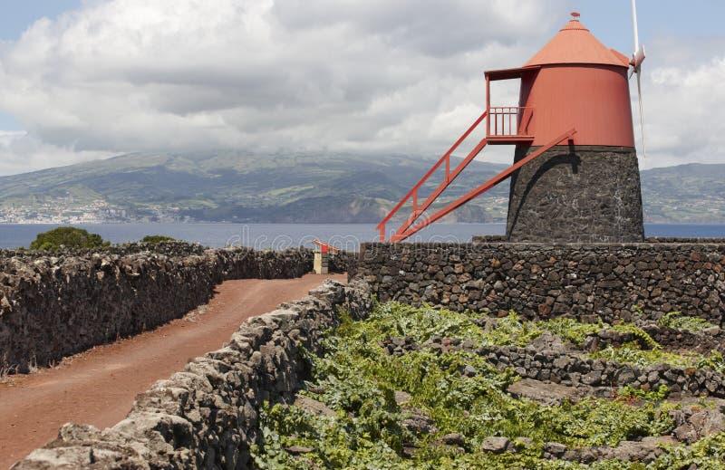 Traditional vineyard plantation windmill in Pico island. Azores. Portugal. Currais. Horizontal stock photos