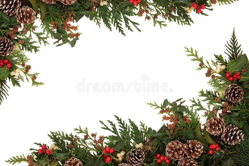 Download Traditional Winter Border stock image. Image of holly - 26890655