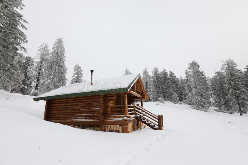 Traditional wood alpine chalet on a mountain slope against forest. In the background photographed from below stock images