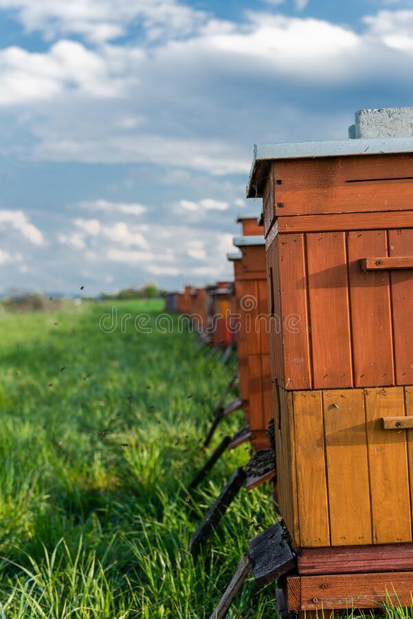 Traditional Wooden Beehives in Fields. Beekeeping and Honey Production. Organic Food Farming royalty free stock image