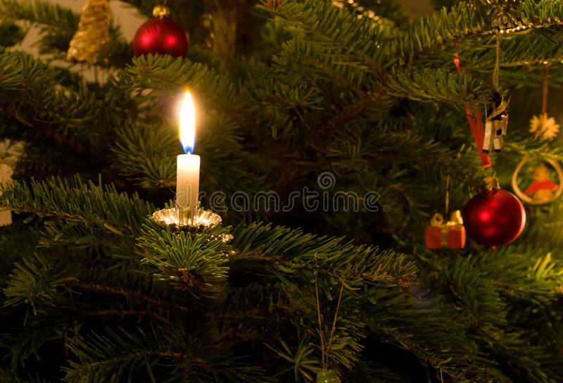 Traditional Xmas Tree. Closeup of a traditional Christmas tree with real candles stock image