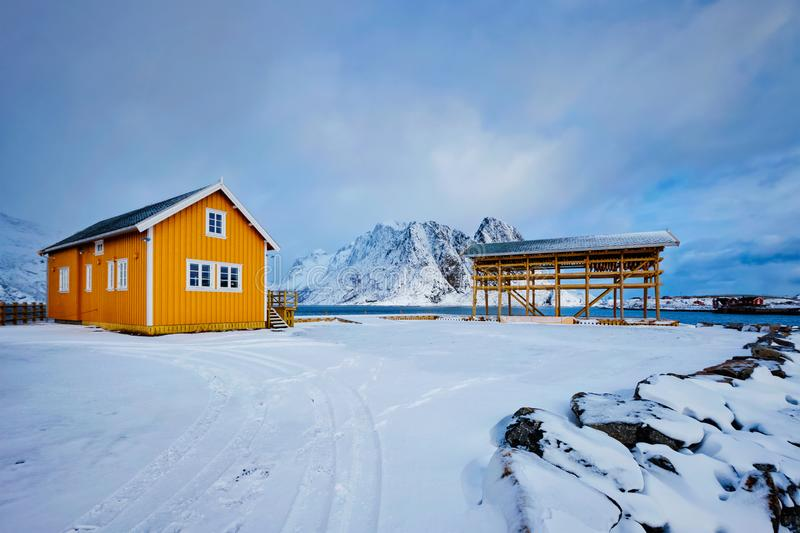 Rorbu house and drying flakes for stockfish cod fish in winter. Lofoten islands, Norway royalty free stock photo