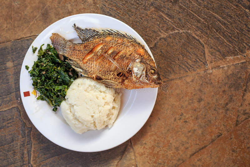 Traditioneel Afrikaans voedsel - ugali, vissen en greens royalty-vrije stock afbeelding