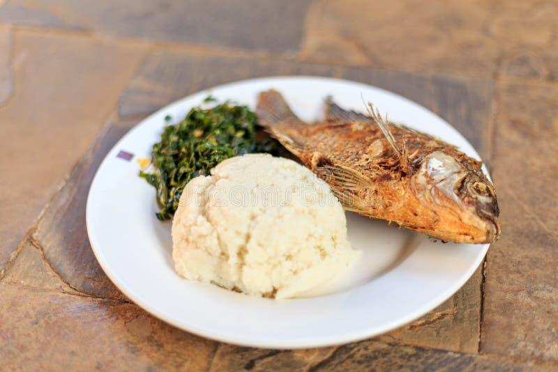 Traditioneel Afrikaans voedsel - ugali, vissen en greens stock foto's