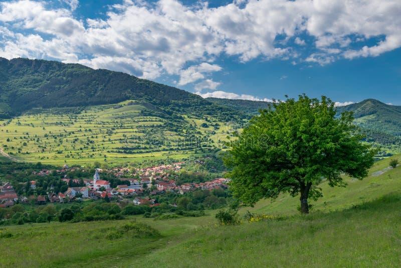 Traditioneel bergdorp bij de basis van de heuvel in Roemenië stock afbeelding