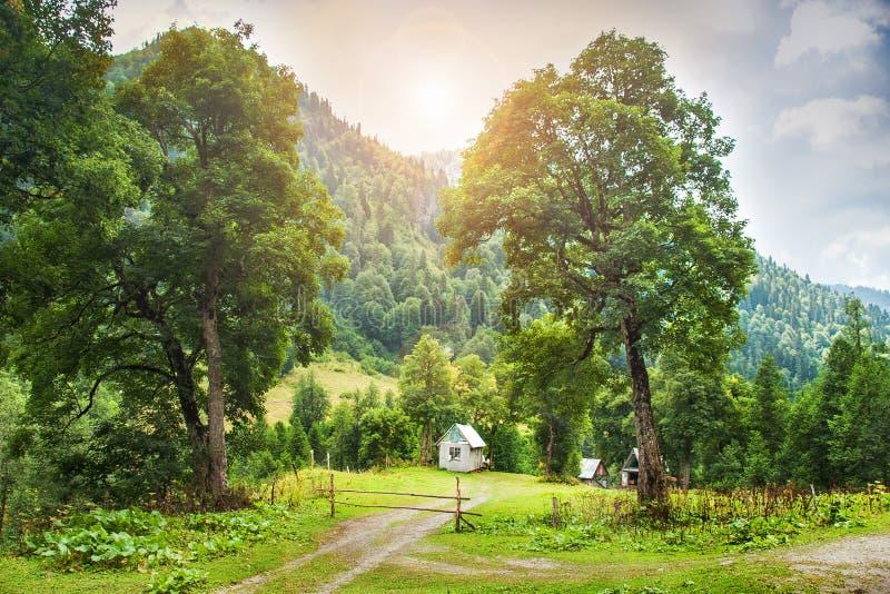 Traditioneel houten berghuis op een groen gebied in de zomer royalty-vrije stock afbeelding
