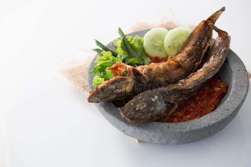 Traditioneel Indonesisch culinair voedsel pecel lele royalty-vrije stock afbeelding