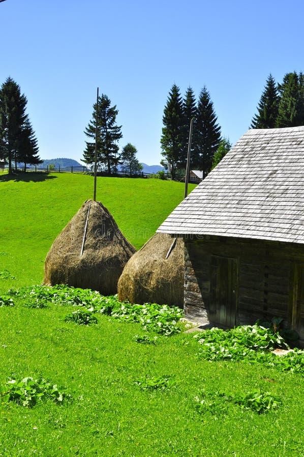 Traditioneel Roemeens dorp met strobalen royalty-vrije stock foto's