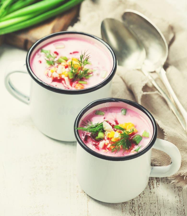 Traditionele bieten koude soep stock afbeelding