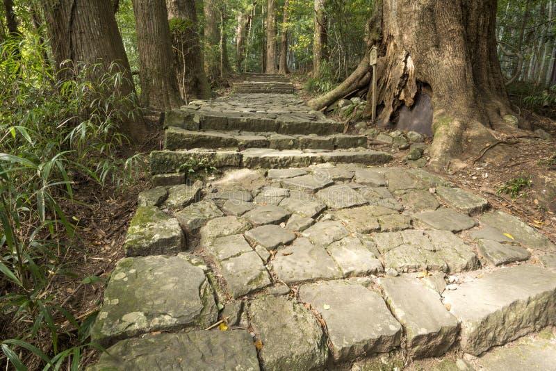 Traditionele gecombineerde steenstappen stock foto