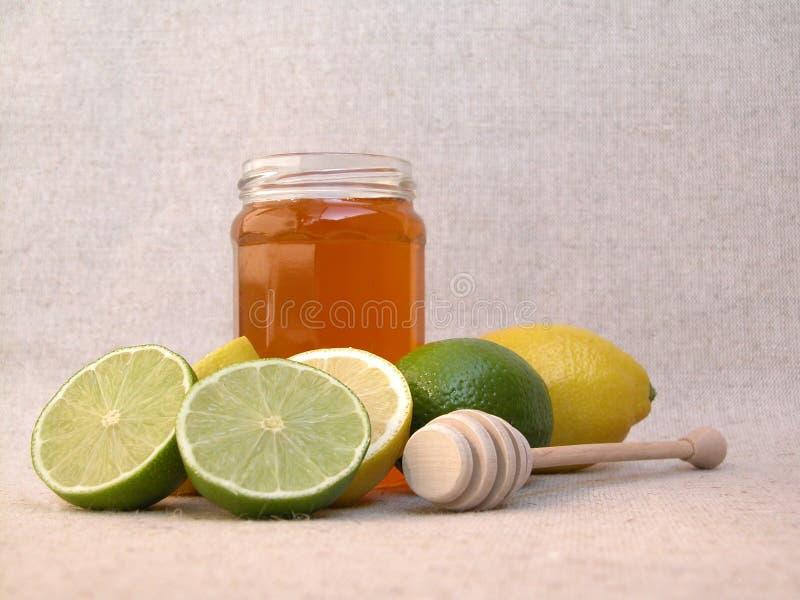 Download Traditionele geneeskunde stock foto. Afbeelding bestaande uit citrusvrucht - 279974