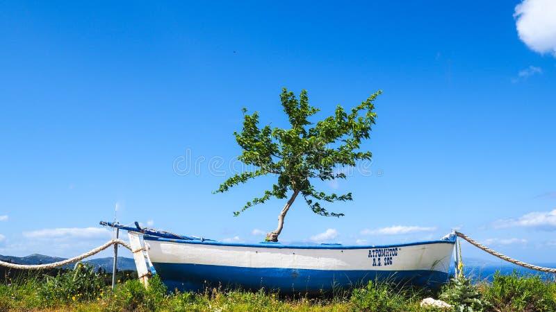 Traditionele Griekse boot en Olive Tree De fotografie van het concept Zaky royalty-vrije stock afbeeldingen