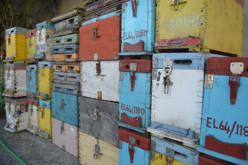 Traditionele houten bijenkorven stock foto