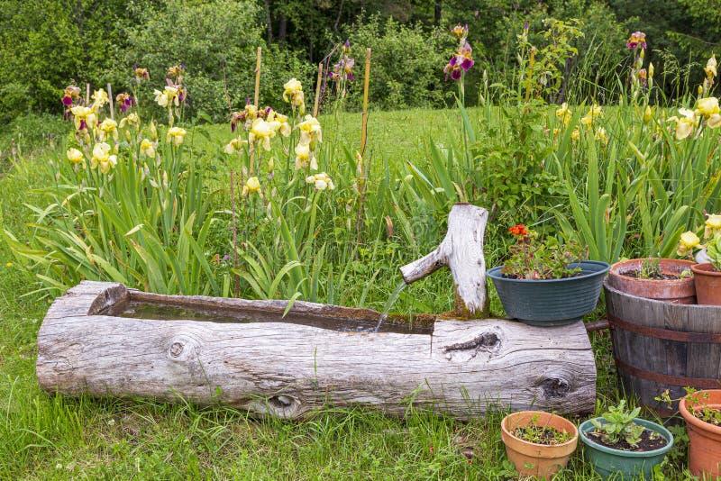 Traditionele houten watertrog in Seyne les Alpes royalty-vrije stock afbeelding