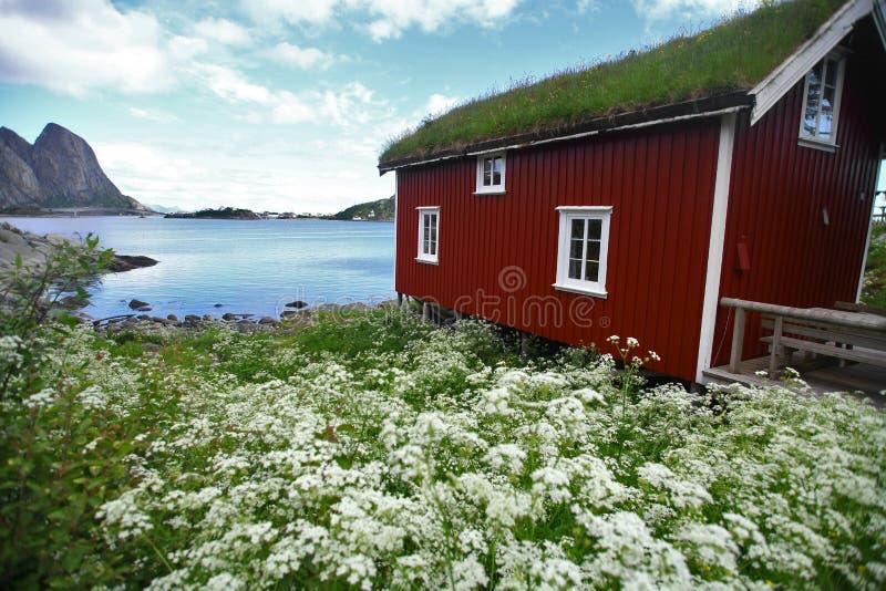 Traditionele huizen in Lofoten, Noorwegen stock afbeeldingen