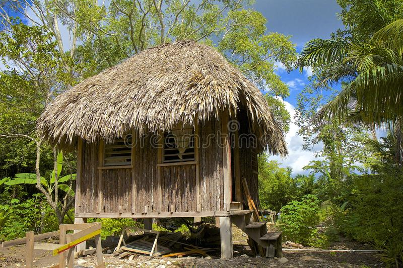 Traditionele hut in Belize stock afbeelding