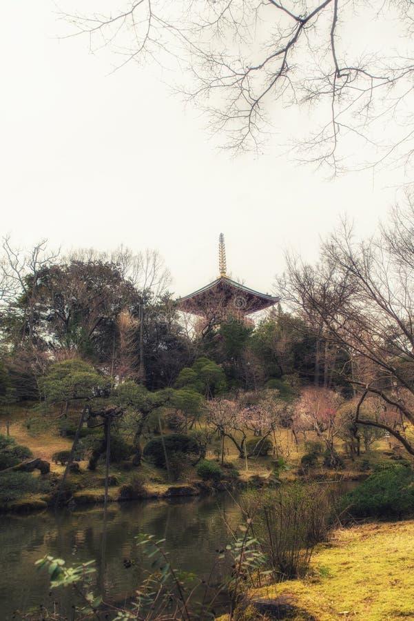 Traditionele Japanse stijl van tempel in de tuin royalty-vrije stock foto