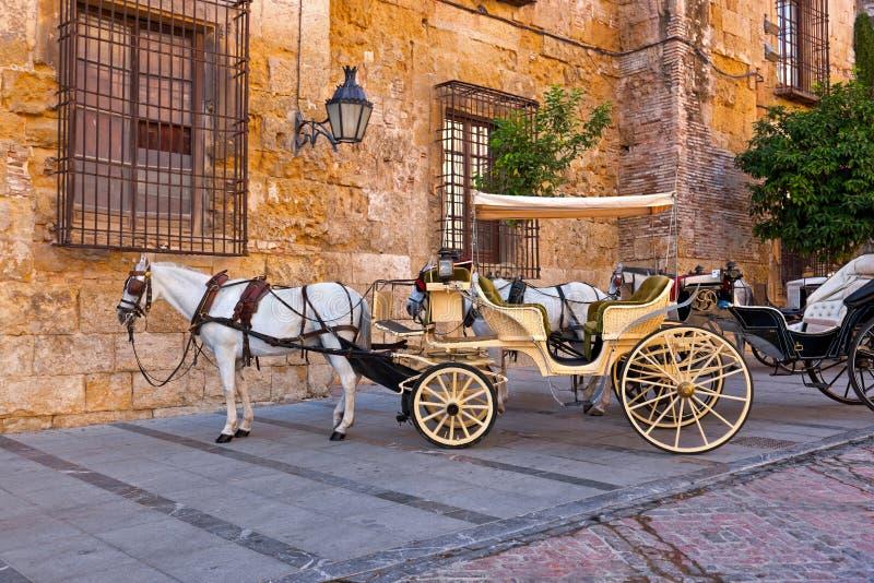 Traditionele Paard en Kar in Cordoba Spanje royalty-vrije stock afbeelding