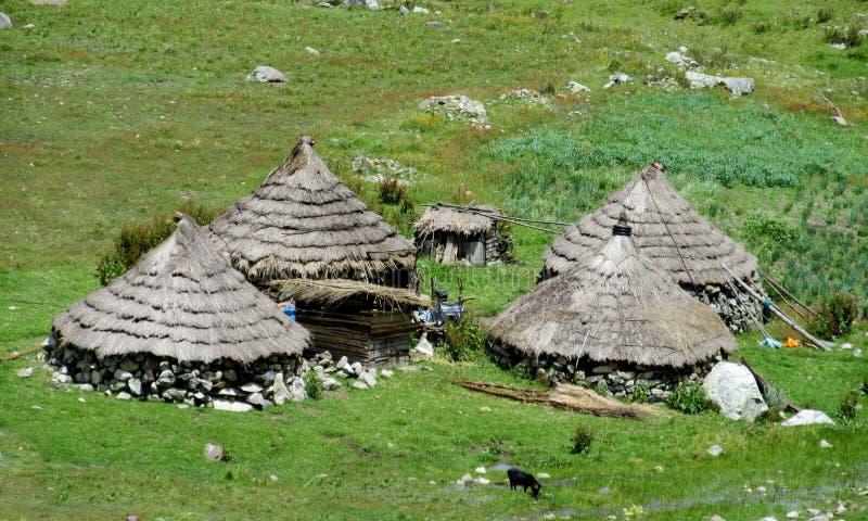 Traditionele quechua dorpshuizen met kegelstrodak stock foto