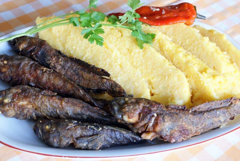 Traditionele Roemeense maaltijd: mamaliga met vissen stock afbeeldingen