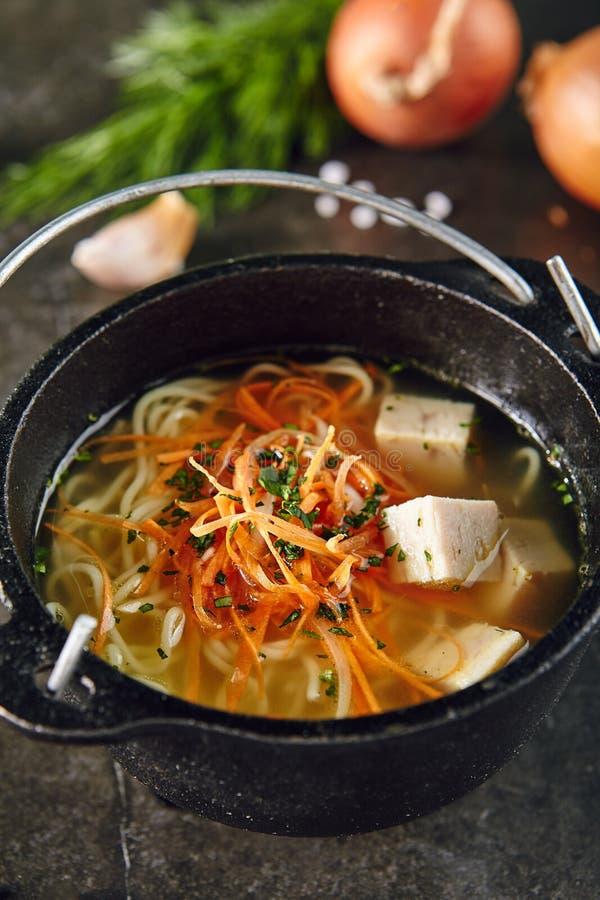 Traditionell asiatisk soppa med nudlar och höna royaltyfri foto