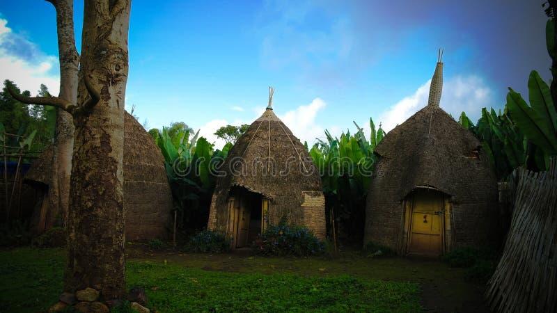 Traditionell Dorze stamby, Chencha, Etiopien royaltyfria foton