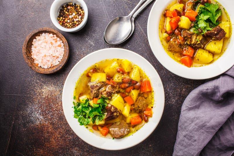Traditionell eintopfsoppa med kött, bönor och grönsaker i en vit platta royaltyfri bild