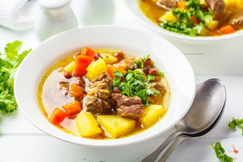 Traditionell eintopfsoppa med kött, bönor och grönsaker i en vit platta, vit bakgrund royaltyfri fotografi