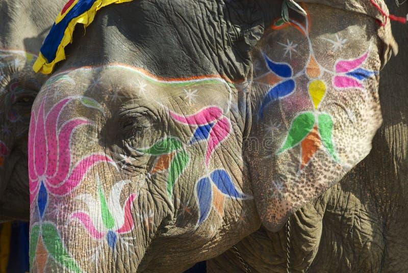 Traditionell elefantmakeup i Jaipur, Rajasthan, Indien arkivbilder