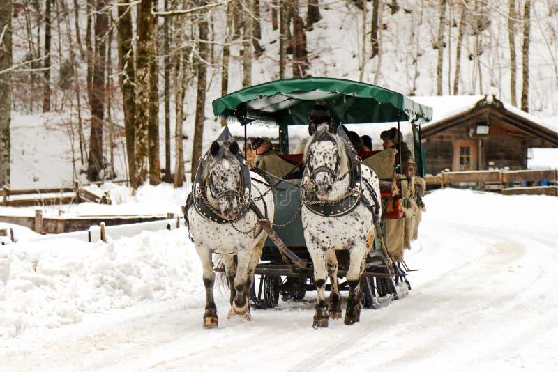 Traditionell hästvagnsritt under vintern arkivfoton