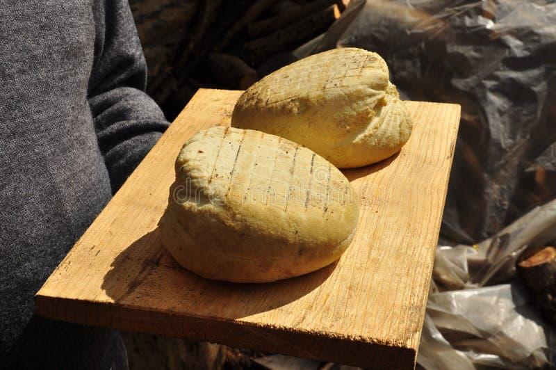Traditionell hand - gjord ost: rökt ricotta royaltyfri fotografi