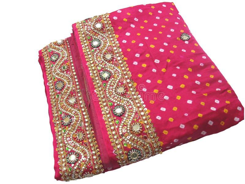 traditionell india saree arkivbild