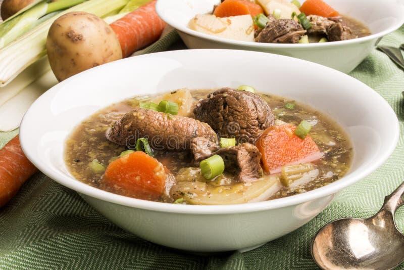 Traditionell irländsk lammragu med potatisen, moroten, selleri och spr royaltyfri bild