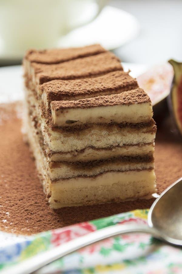 Traditionell italiensk efterrätt för Tiramisukaka med kakao på en porslinplatta royaltyfri fotografi