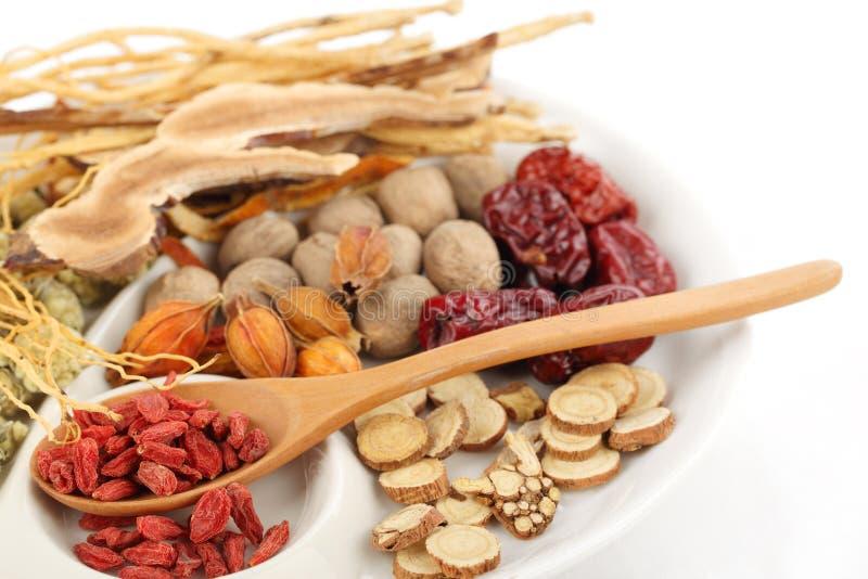 traditionell kinesisk växt- medicin royaltyfria foton
