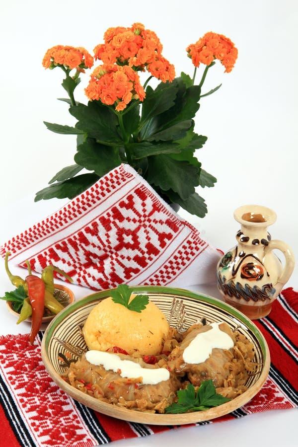 traditionell kokkonstromania sarmale royaltyfri fotografi