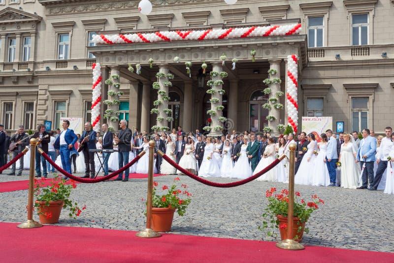 Traditionell kollektiv bröllopceremoni i Belgrade 4 arkivfoto