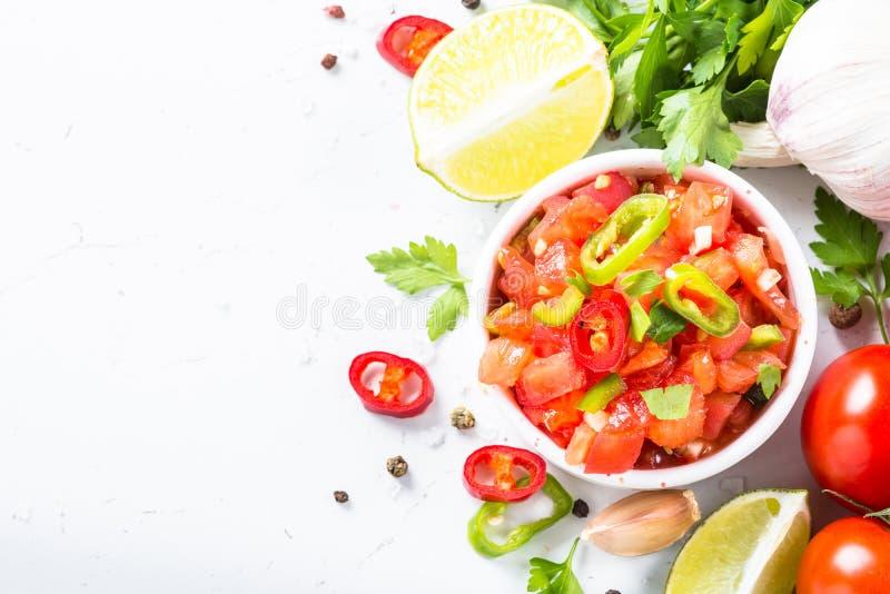 Traditionell latin - amerikansk mexikansk salsasås och ingrediensnolla arkivfoton