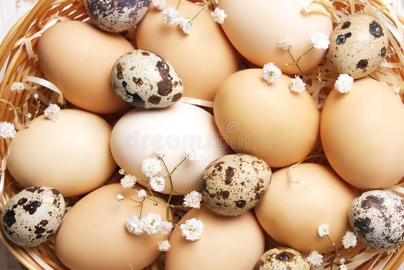 Traditionell mall för easter kort med omålade blandade organiska ägg i vide- korg med hö och dekorativa vildblommor royaltyfri bild