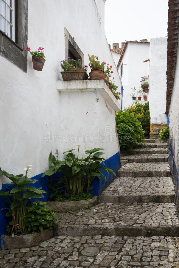 Traditionell medeltida gata i Obidos, Portugal royaltyfria bilder