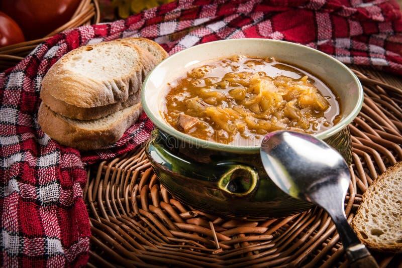 Traditionell rysk sur kålsoppa royaltyfri bild
